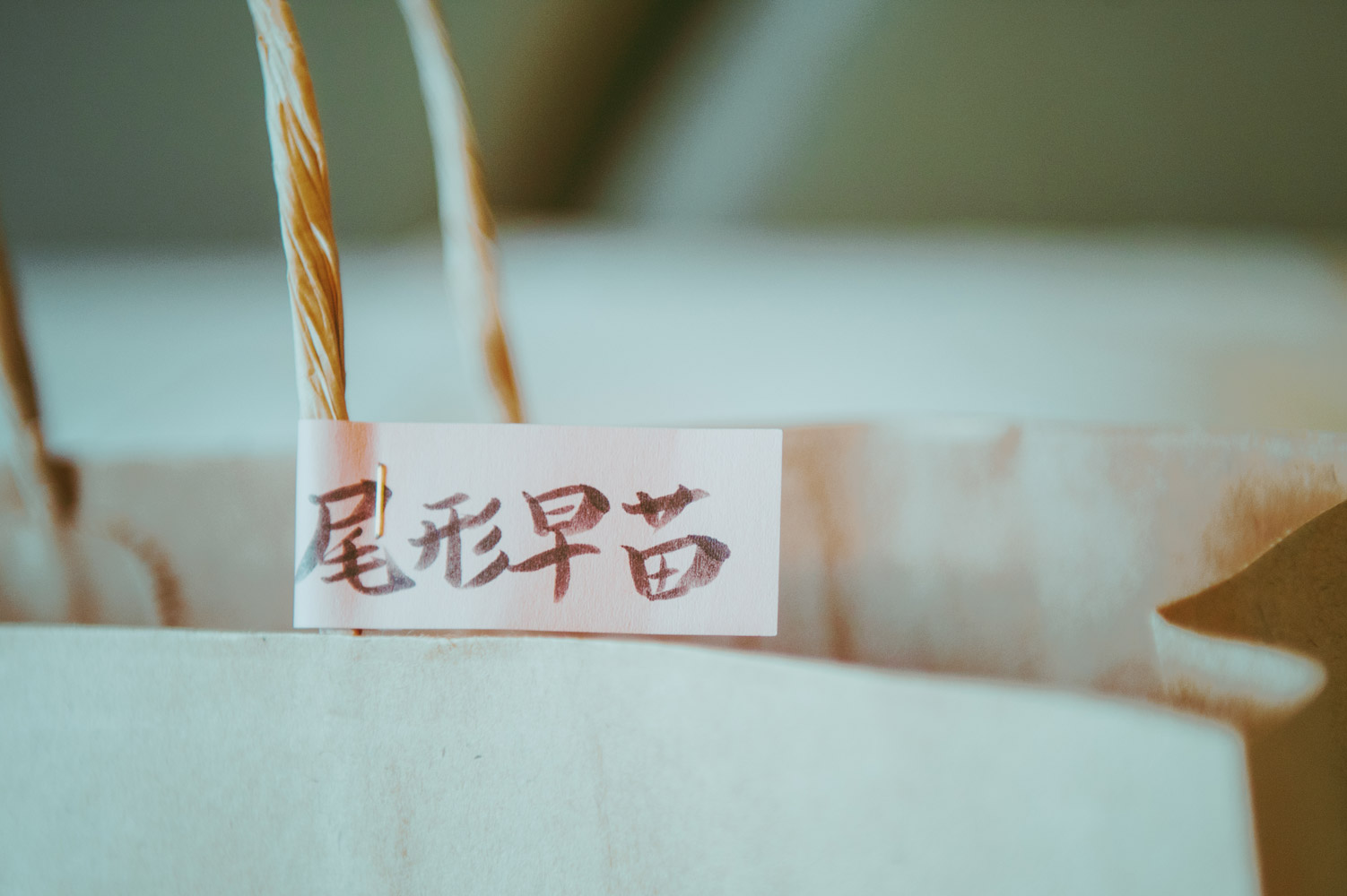 wedding_portfolio_001_014
