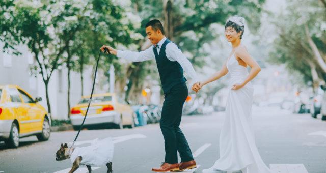 芝頤 & 嘉陽 自助婚紗/風格婚紗 搶鮮版